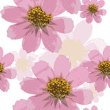 Cosmos. Seamless pattern texture of pressed dry flowers. Stock Photography