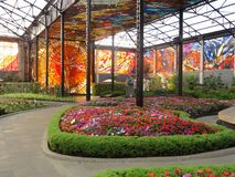 Cosmovitral是一个植物园在托卢卡-墨西哥 免版税库存照片