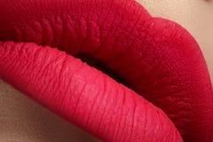 Cosméticos. Macro del maquillaje de la estera de los labios del rosa de la moda Imagenes de archivo