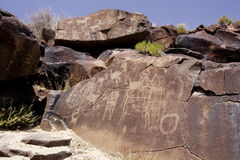 Coso Range Petroglyphs. Native American rock art petroglyphs of various designs and sheep like figures carved into desert varnish covered boulders in Little Stock Image