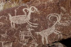 Coso Range Petroglyphs. Native American rock art petroglyph close up of two sheep like figures carved into desert varnish covered rock in Little Petroglyph Royalty Free Stock Image
