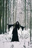 Cosplay black witch in winter forest Stock Images
