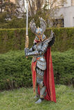 Cosplayer dressed as the character Haven Paladin. BRNO, CZECH REPUBLIC - APRIL 30, 2016: Cosplayer dressed as character Haven Paladin from game Might, Magic Royalty Free Stock Photo
