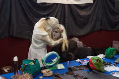 Cosplayers making up at Festival del Fumetto convention in Milan, Italy Royalty Free Stock Photos