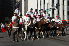 Cossack Riders in the National Western Stock Show  Royalty Free Stock Photos