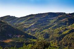 Cossano Belbo (山麓,意大利) : 横向 免版税库存图片