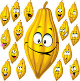 Cosse de cacao avec beaucoup d'expressions du visage d'isolement Images stock