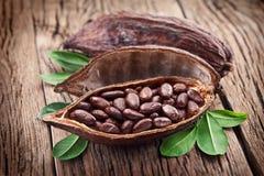 Cosse de cacao Photographie stock libre de droits