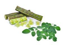 Cosse de Moringa et isolat de feuilles sur le fond blanc photographie stock