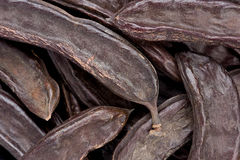 Cosses de caroube (siliqua de Certonia) Images libres de droits