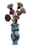 Cosses de fleur. Lotus Images stock