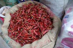 Cosses de poivron rouge dans le sac Photographie stock libre de droits