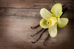 Cosses et fleur de vanille Image libre de droits