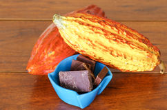 Cosses et haricots frais de cacao dans les cosses d'un cacao et la graine de cacao sèche foncée Photo libre de droits