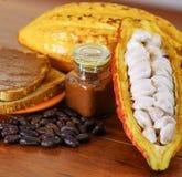 Cosses et haricots frais de cacao en cosses d'un cacao et crème de cacao au-dessus des morceaux de pain Image stock