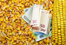 Cost of corn in euro banknotes Stock Photos