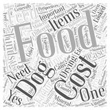 Cost of feeds word cloud concept word cloud concept  background. Text Royalty Free Stock Photography