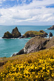 Cost at Kynance Cove Cornwall Royalty Free Stock Photography