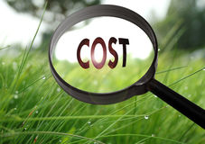 Cost. Magnifying glass with the word cost on grass background. Selective focus Stock Images