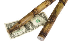 Cost of Sugar Cane Stock Images