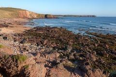 Costa áspera de Pembrokeshire, Gales Imagem de Stock Royalty Free