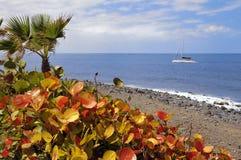 Costa Adeje bei Tenerife Lizenzfreie Stockfotos
