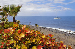 Costa Adeje at Tenerife Royalty Free Stock Photos