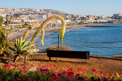 Costa Adeje. Tenerife. Canary Islands Stock Photos
