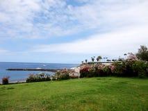 Costa Adeje Tenerife, kanariefågelöar, Spanien Royaltyfri Fotografi