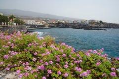 Costa Adeje, Tenerife Spanje Stock Foto's