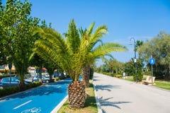 Costa adriática de la costa de mar de la ciudad Alba Adriatica en Italia, palmeras el día soleado del verano Fotografía de archivo