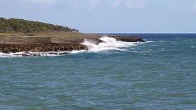 Costa in Baracoa stock footage