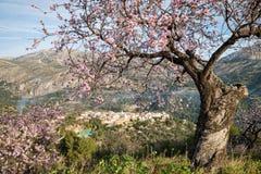 Costa Blanca landscape Royalty Free Stock Image