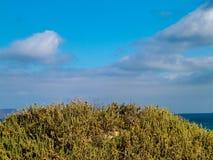 Costa bonita em Caleta de Famara, Ilhas Canárias de Lanzarote imagem de stock royalty free