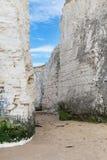 Costa branca popular do canal inglês de Mancha do La da baía da Botânica dos penhascos, Imagem de Stock