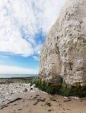 Costa branca popular do canal inglês de Mancha do La da baía da Botânica dos penhascos, Foto de Stock