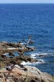 Costa Brava, Spain Royalty Free Stock Image