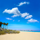 Costa Calma beach of Jandia Fuerteventura Stock Photos