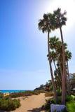 Costa Calma beach of Jandia Fuerteventura Royalty Free Stock Photography