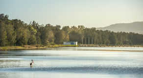 Costa central da reserva longa do Foreshore do molhe, NSW Imagens de Stock Royalty Free