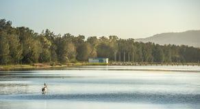 Costa central del embarcadero de la reserva larga de la playa, NSW Imágenes de archivo libres de regalías