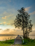 Costa centrale del molo della riserva lunga della riviera, NSW Fotografia Stock