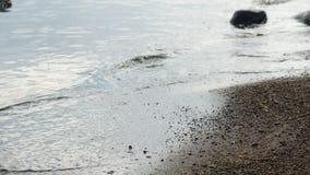Costa com areia e rochas com ondas filme