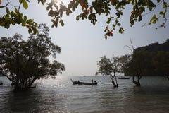 Costa com manguezais crepúsculo tailândia Fotos de Stock Royalty Free