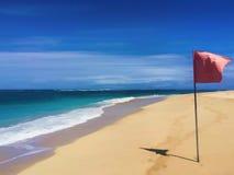 Costa con la bandera roja Ejemplo digital de la playa tropical ilustración del vector