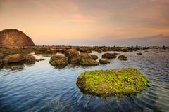 Costa con las rocas y el musgo foto de archivo