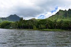 Costa costa con los bosques y árboles con las montañas que suben en el fondo foto de archivo