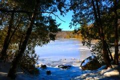 Costa congelada da lagoa de McGrath através das árvores fotos de stock