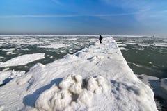 Costa congelada del océano del hielo - invierno polar del hombre solo Foto de archivo libre de regalías