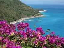 Costa costa Fotos de archivo